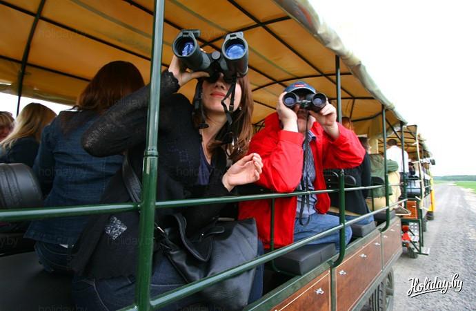 "Сафари в парке ""Припятский"". Во время наблюдения за животными"