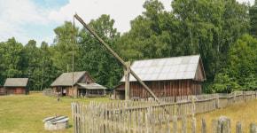 Медвежий угол Беларуси: чудеса Прибужского Полесья