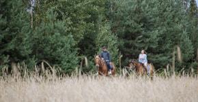Фотофакт: на конях по Березинскому заповеднику
