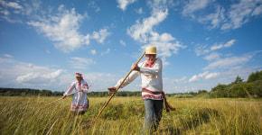 Экологический фестиваль «Споровские сенокосы» пройдет 8 августа