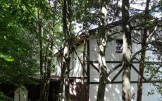 Дом №2 в усадьбе «Амбер»