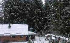 Домики в лесу, домик с баней под Минском
