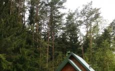 Домики в лесу, гостевой дом под Минском