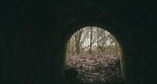 Руины усадьбы «Обрина» в поселке Первомайский