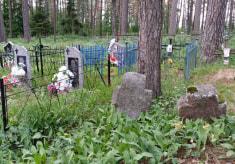 Каменные кресты на кладбище в деревне Майск