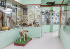 Краеведческий музей в Слониме